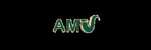 Algemene Muzikale Vorming (AMV)
