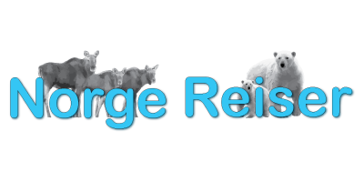 logo-norge-reiser-elanden-ijsbeer